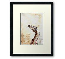 Troodon Framed Print