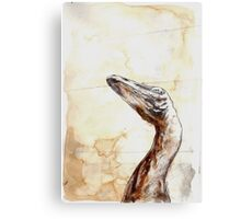 Troodon Canvas Print