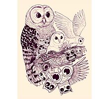 Owl Movement Photographic Print