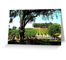 Relax and Wine Down / California Vineyard / Winery Greeting Card