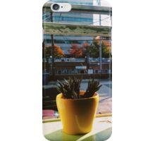 window succulents iPhone Case/Skin