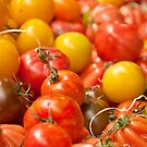 You say Tamato, I say Tomato by Stephen Knowles