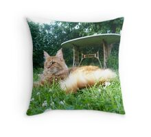 Peace and... Throw Pillow