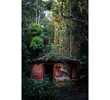 Lost Gardens - João Pessoa, Brazil Photographic Print