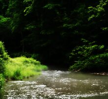 Creek #1 by Estell