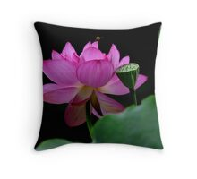 The world shines in the midst of lotus flower Throw Pillow