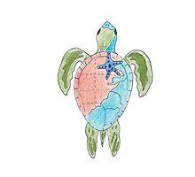 Earth Sea Turtle  Photographic Print