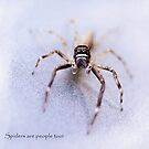 Spiders are People Too! by Robyn Carter