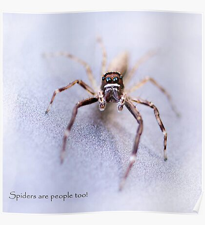 Spiders are People Too! Poster