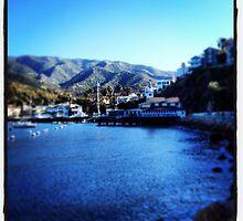 Catalina, CA by photosbyamy