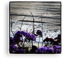 Spring Time in SoCal Canvas Print