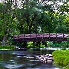 Covered Bridge Park by James Meyer