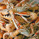 A Plate of Langoustines by Buckwhite