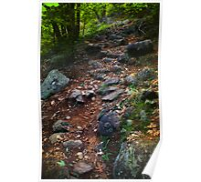 The Mountain Trail to Arnold Pond Poster
