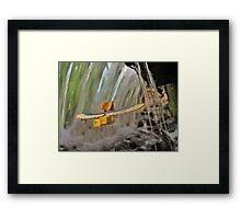 Nearby Woods Framed Print