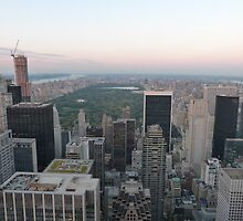 Central Park, New York by FangFeatures