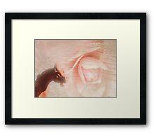 Dragon heart Framed Print