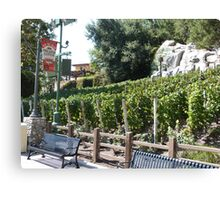 Vineyard California Canvas Print