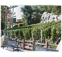 Vineyard California Poster