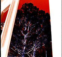 Window Tree I by taudalpoi