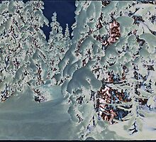 Snowy Woods V by taudalpoi