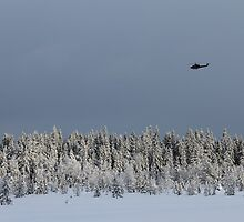 A chopper came along. Winters day in Norwegian mountain. by UpNorthPhoto