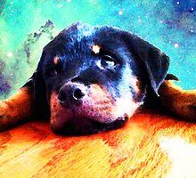 Rottie Puppy by Sharon Cummings by Sharon Cummings
