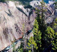 Fall in Yellowstone by Bryan Shane