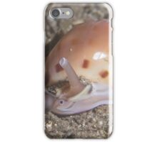 Helmet Snail iPhone Case/Skin