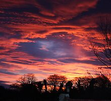 Christmas Sky ~ At sunrise everything is luminous but not clear. by EMacken