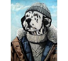 MAN OF THE SEA - Dalmatian dog portrait  Photographic Print