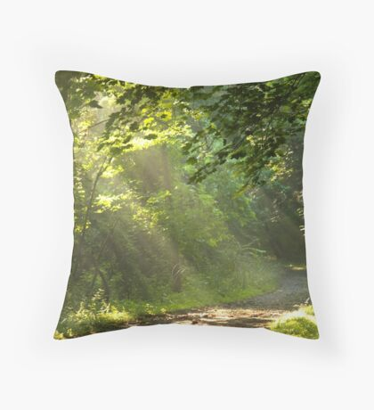 Catch It While You Can Throw Pillow