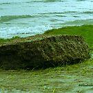 Ocean erosion by Choux