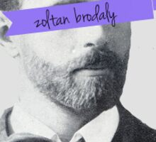 zoltan brodaly Sticker
