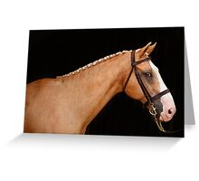 Mister Ed Greeting Card