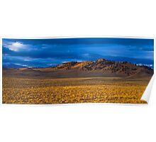 Lone Landscape Poster