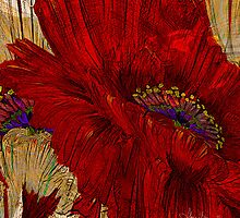 The Passion of Poppies by Alma Lee
