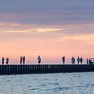 Picture The Sunset Photographer by Mikell Herrick