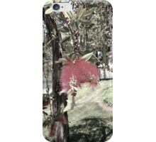 San Diego Flower (color dim) iPhone Case/Skin