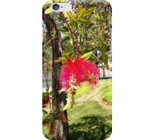 San Diego Flower (full color) iPhone Case/Skin