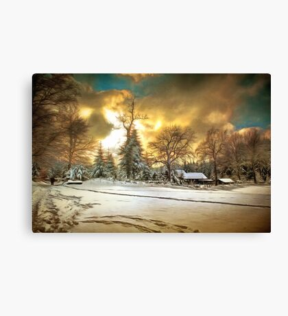 Winter Refuge Canvas Print