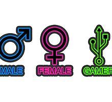 Male, Female, Gamer by Kelvin Kellner