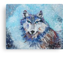 Snow Wolf - Animal Art by Valentina Miletic Canvas Print