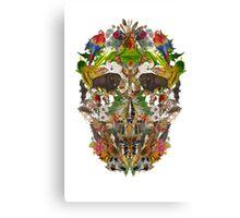 Ancient Skull Canvas Print