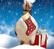 Puffin Christmas Card by Moonlake