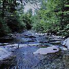 Rivers Flow  by DreamCatcher/ Kyrah