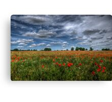 Essex Poppy Field Canvas Print