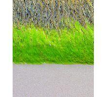 BEACH TRIPLE Photographic Print
