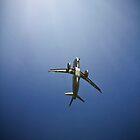 Icarus Soaring by Bryan Freeman