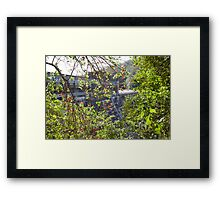Chichester Dam wall, Barrington Tops, NSW Framed Print